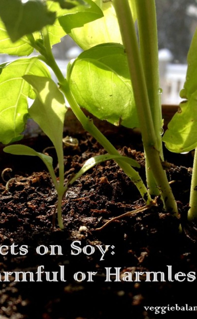 Soy and Soy Lecithin: Harmful or Harmless