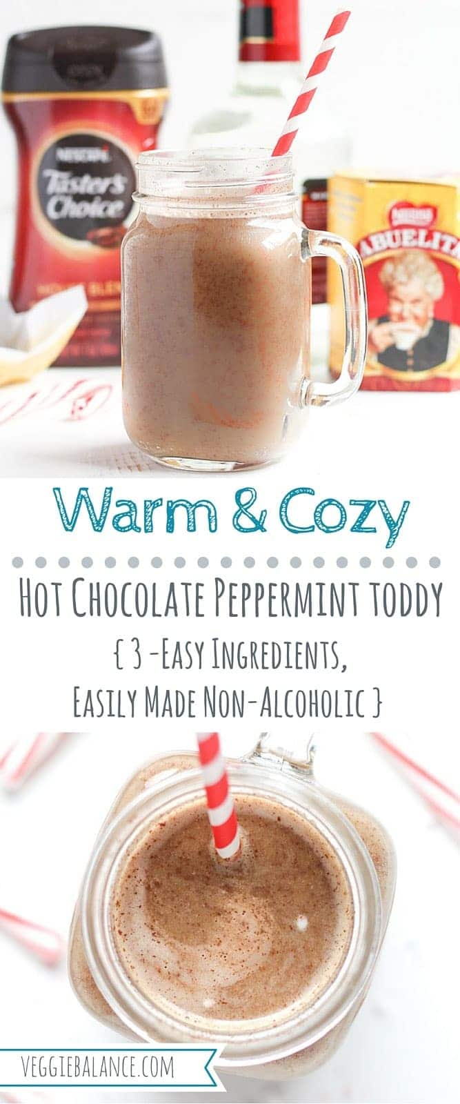 Hot Chocolate Toddy with Peppermint - Veggiebalance.com