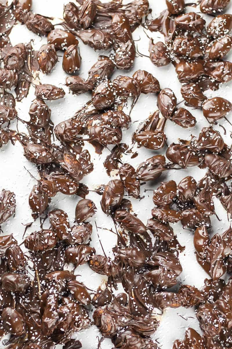 Dark Chocolate Covered Almonds recipe - Veggiebalance.com