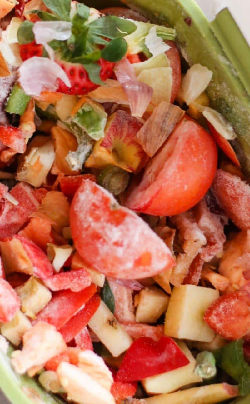 What is the Best Indoor Compost Bin