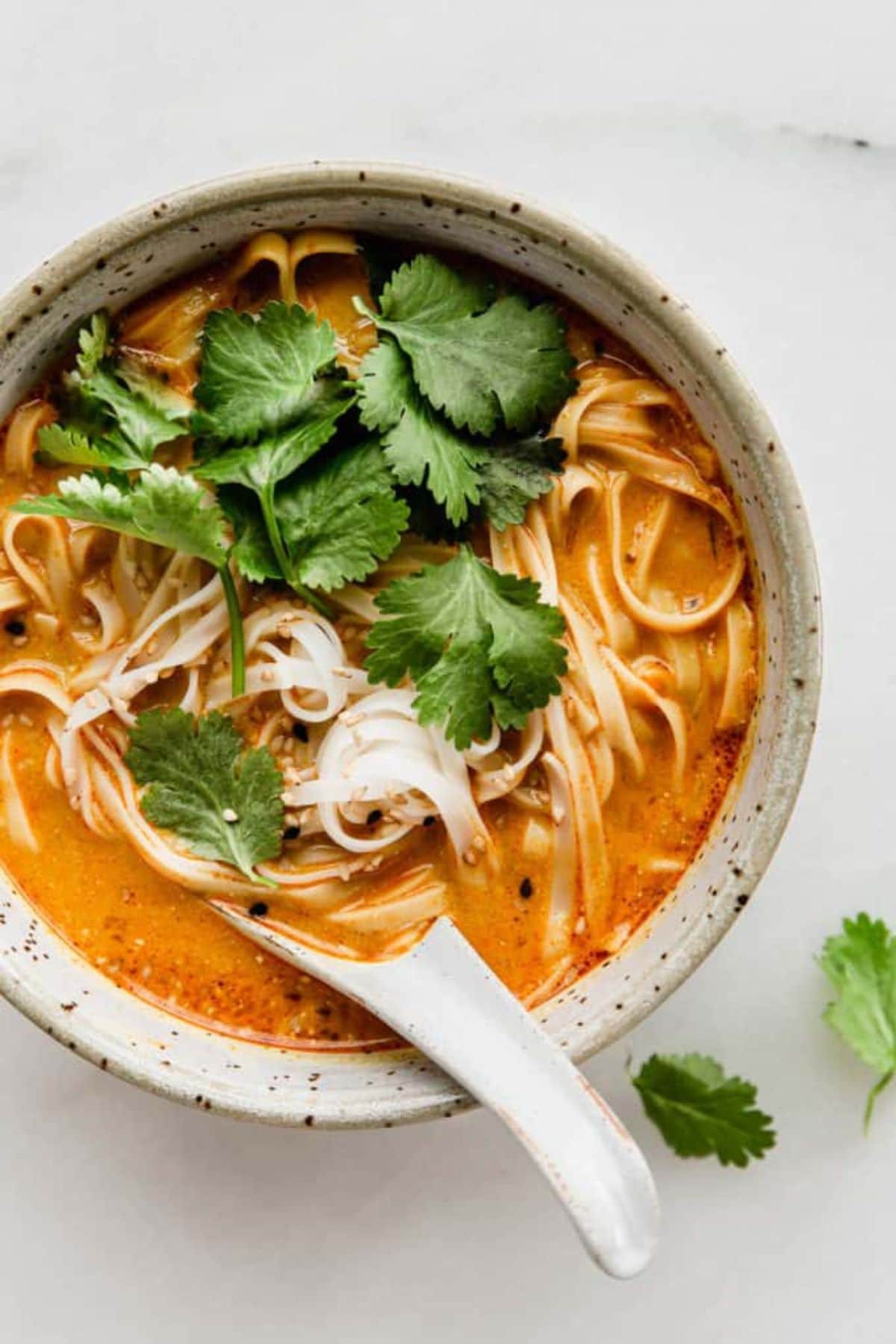 a white bowl with a china spoon filled with noodle soup, topped with cilantro